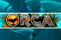 Orca - игровые автоматы на рубли