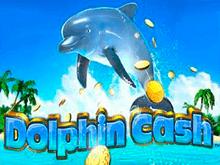 Dolphin Cash